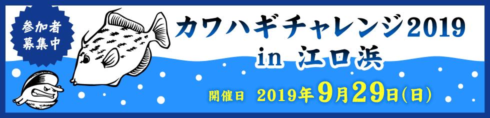 カワハギチャレンジ2019 in江口浜