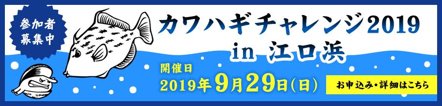 カワハギチャレンジ2019in江口浜