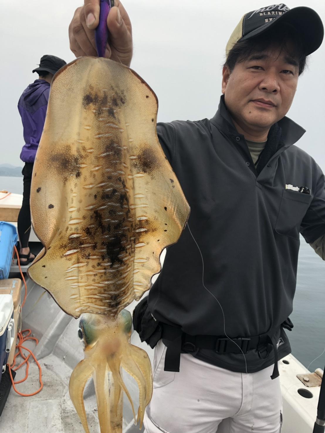 ティップランエギング出船!イカはポツポツ、魚はドンドン?!
